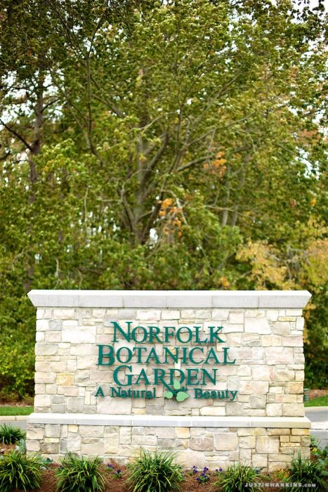 norfolk-botanical-garden-wedding-photography-001