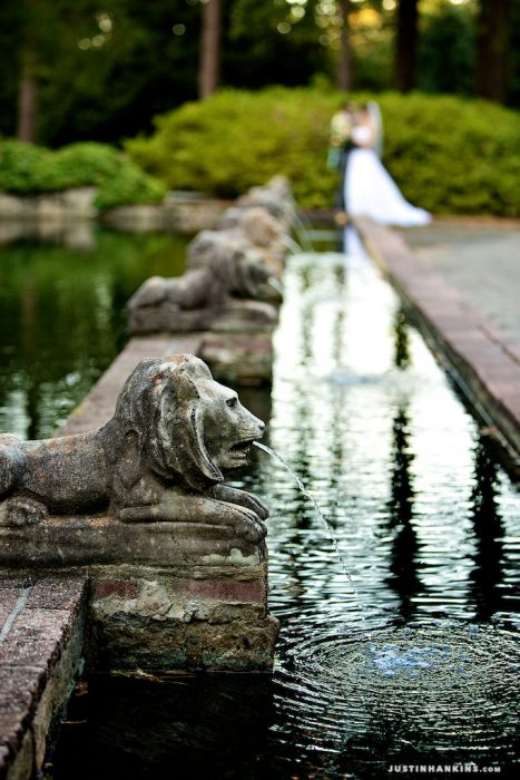 33-Norfolk-Botanical-Garden-Wedding-Photos