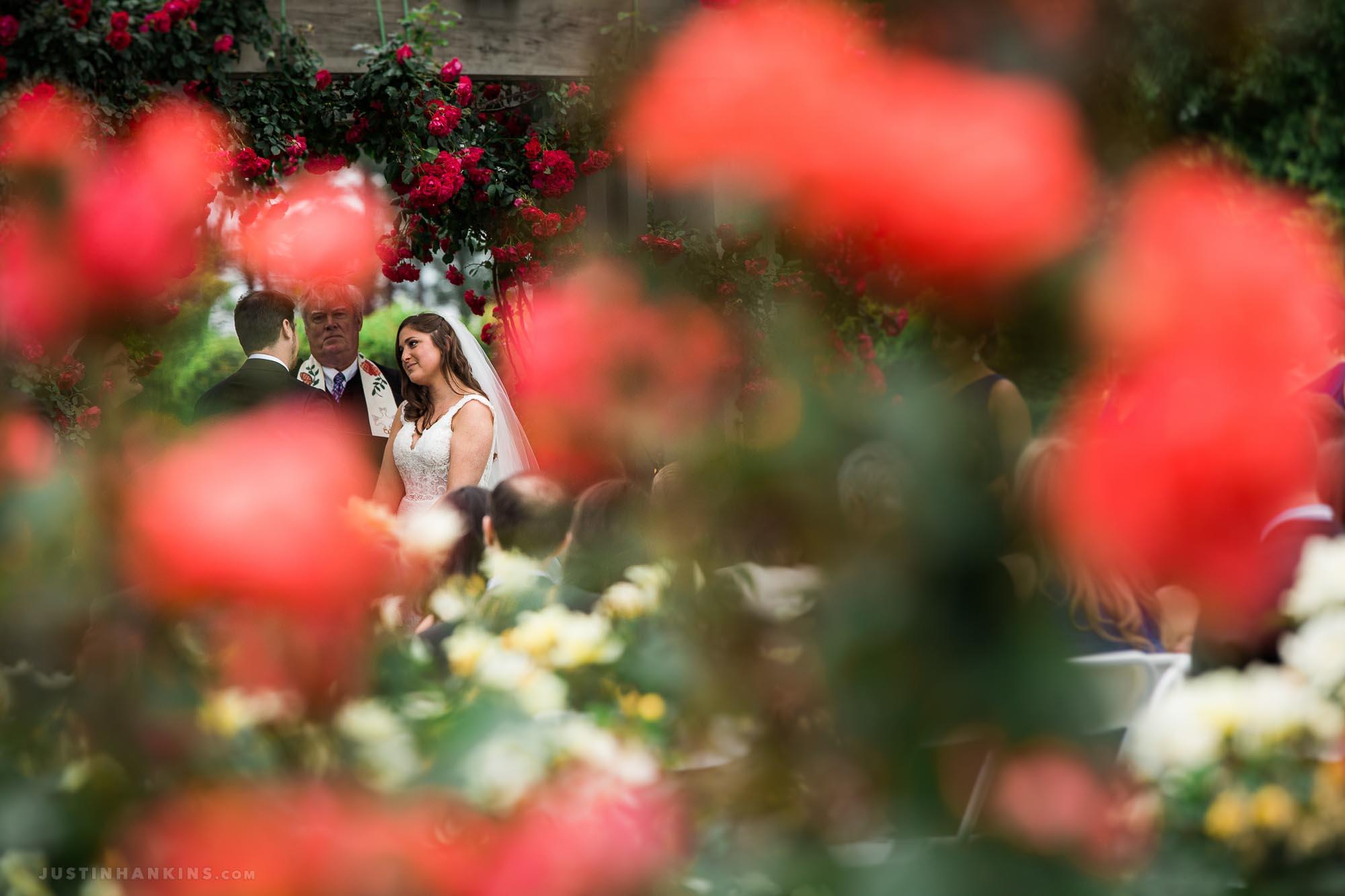 Norfolk Botanical Garden Wedding in the Rose Garden - Justin Hankins ...