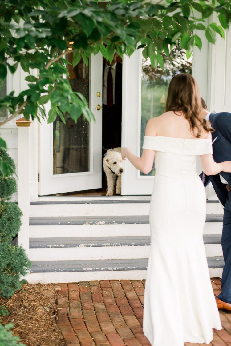 Bride and Groom First Look With Pets - Veritas Vineyard & Winery
