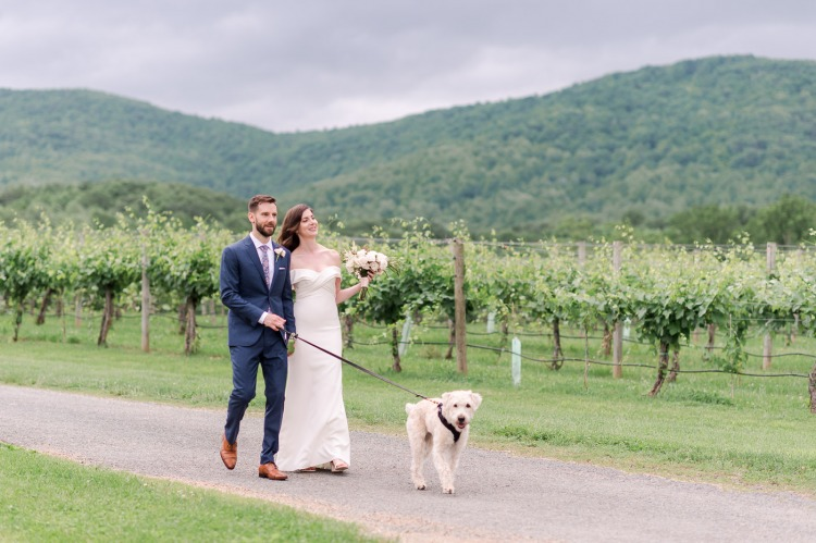 Vineyard Wedding in Charlottesville with Pets
