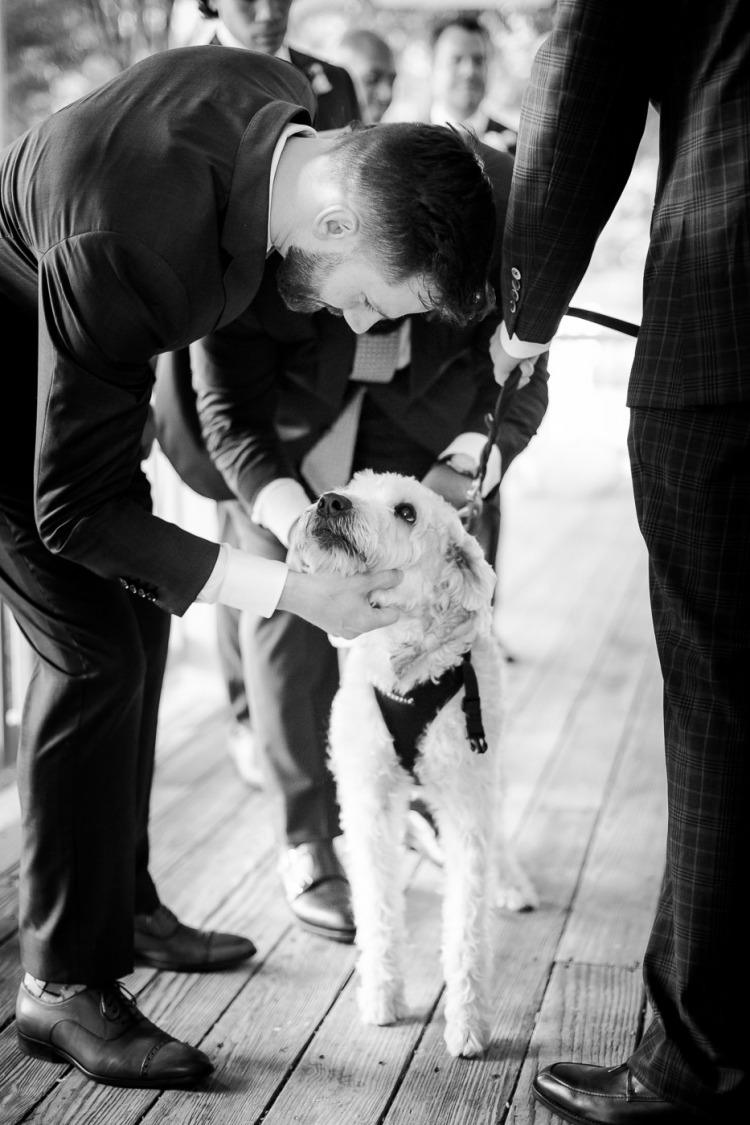 Pet-Friendly Weddings at Veritas Vineyard & Winery